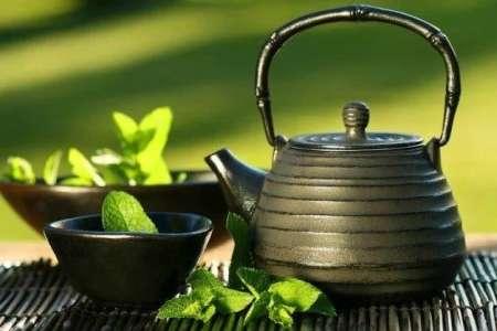 Perdre du poids : le régime thé vert et citron est un bon moyen d'éliminer 1,5 kilos par semaine (programme complet)