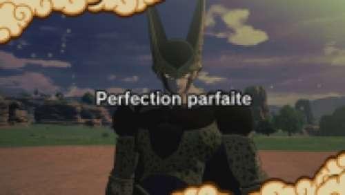 Perfection parfaite