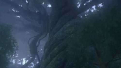 L'arbre Mnémonique
