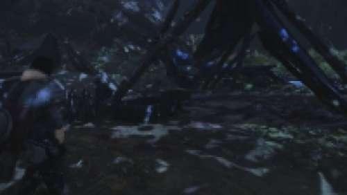 Journaux de l'Enclave de la forêt