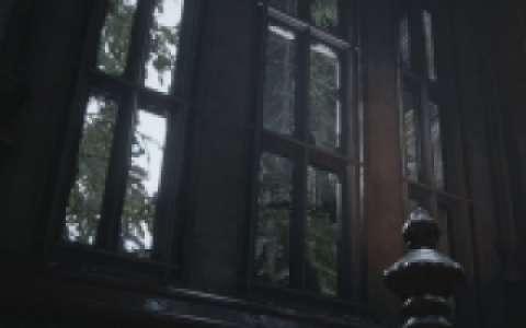 Les 19 fenêtres du château Dimitrescu