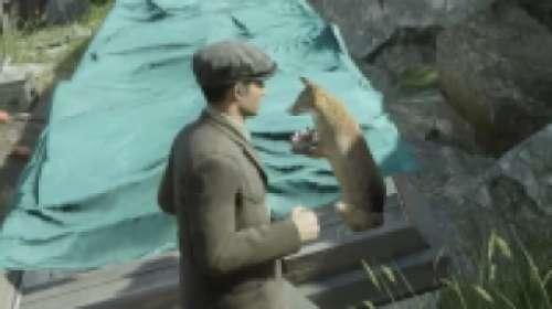Mystery Fox 1 à 25