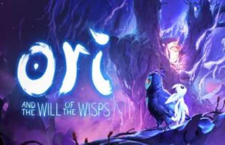 Solution pour Ori and the Will of the Wisps