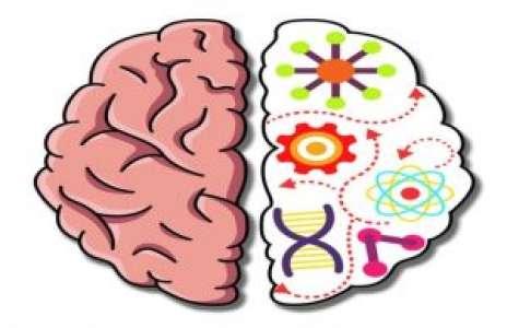 Solution pour Brain Crazy, réfléchissez !