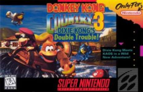 Rétro: Solution pour Donkey Kong Country 3, 103%