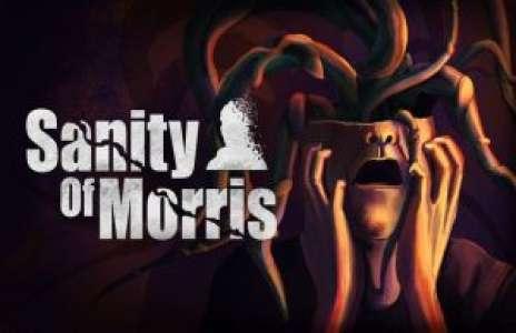 Solution pour Sanity of Morris, réflexion indé