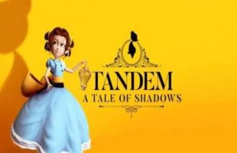 Solution pour Tandem A Tale of Shadows, plateforme et réflexion